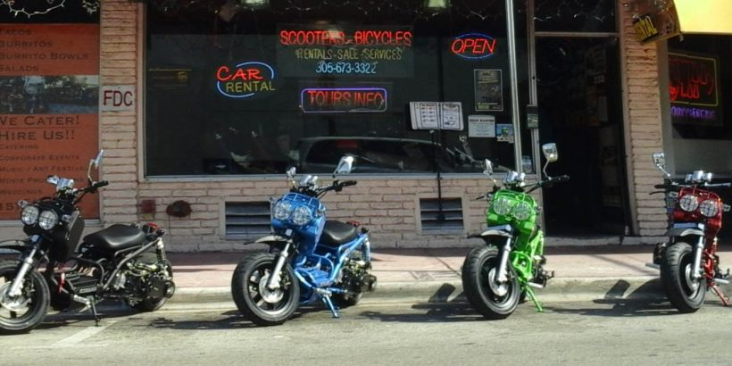 Maddog Scooters - Hot Wheels Rentals